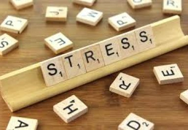 Stressing About Stress …. And Your Health.