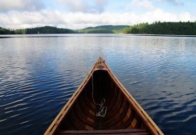 Going Upstream For Better Health
